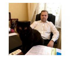 Адвокат по банковским делам Киев. Помощь юриста.